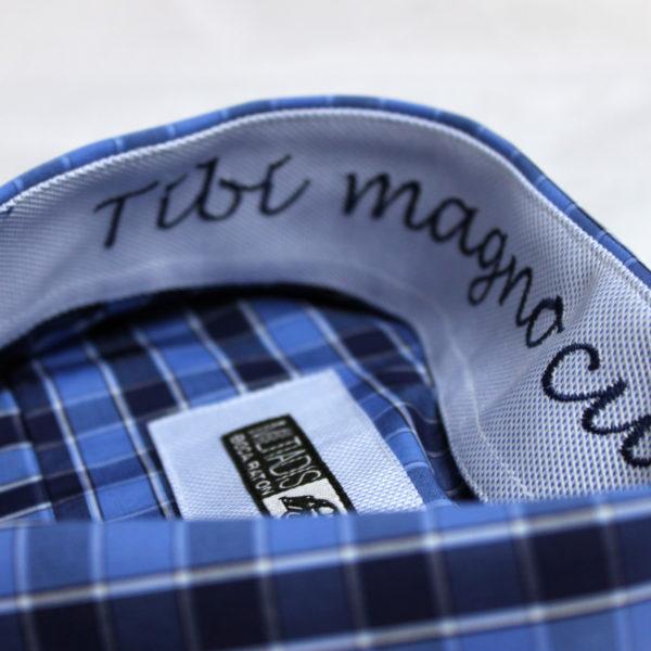 Men's Dress Shirts | OCTAVIAN XIV 011